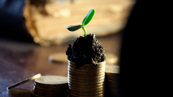 Small Business Profit