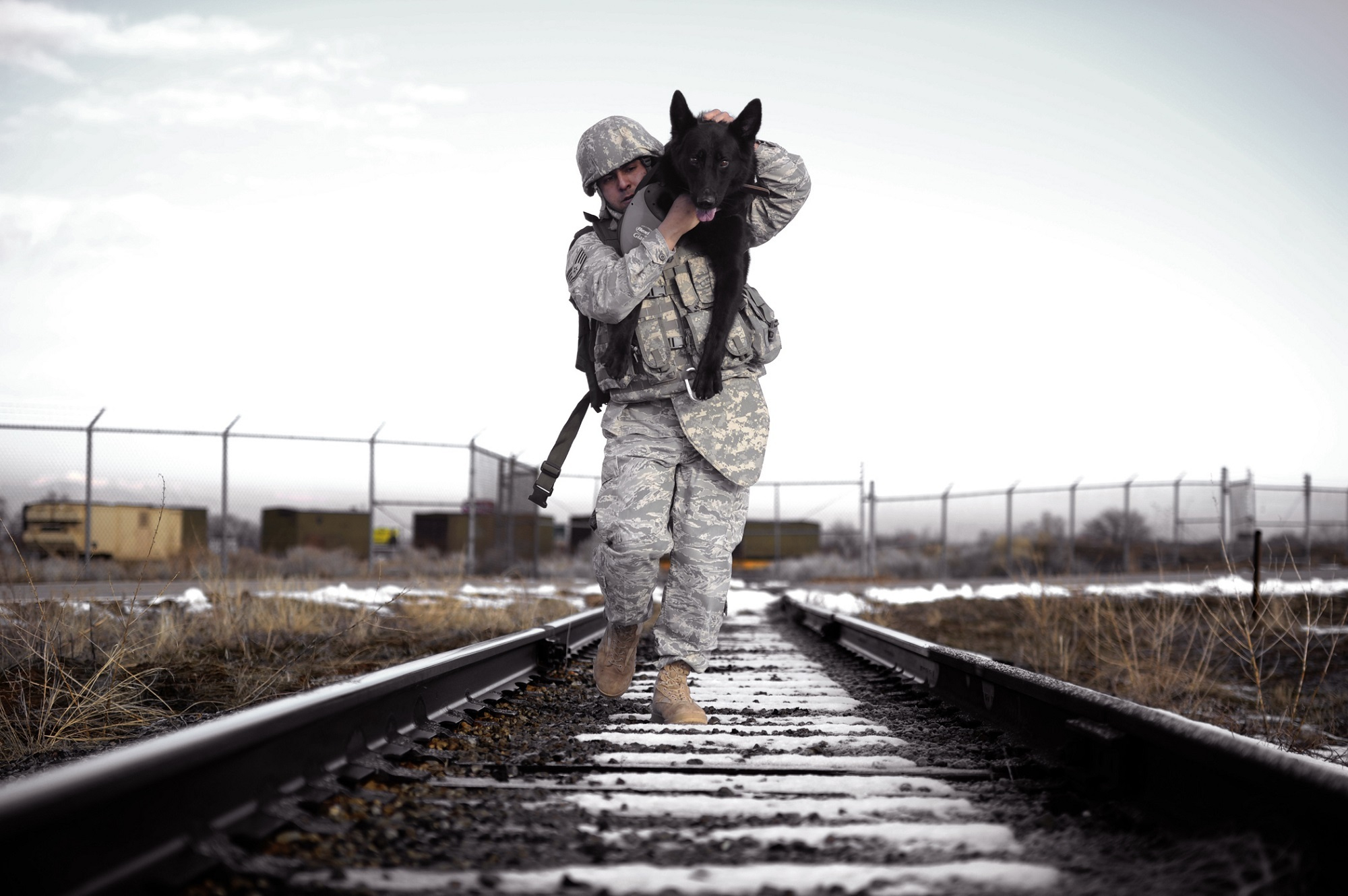 Canva - Soldier Carrying His Dog